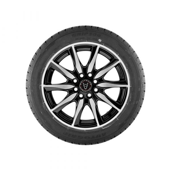 Pirelli DISC per ATD Pirelli P6 Four Seasons Plus Tire P20560R16 92V BW P20560R16 Tire
